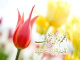 مولد الإمام المهدي عجل الله تعالى فرجه الشريف 08