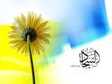 مولد الإمام السجاد عليه السلام 08
