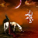 The horse of Imam Hussain (A.S)