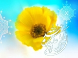 ميلاد امام حسين عليه السلام - عكس شماره ٥