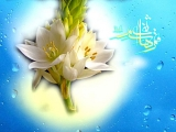 ميلاد حضرت عباس عليه السلام - عكس شماره ٣