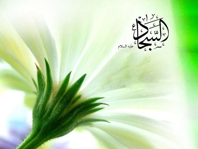 عکس تبریک تولد امام سجاد