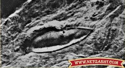 کشف کشتی نوح با کتیبه 5 تن آل عبا پس از 4000 سال + عکس ها