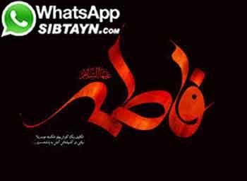 صديقه طاهره درنگاه ائمه معصوم(عليهم السلام)
