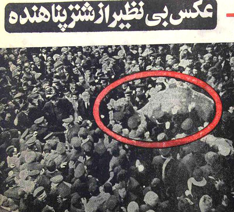 عکس بی نظیر از شتر پناهنده به حرم مطهر امام رضا (علیه السلام)