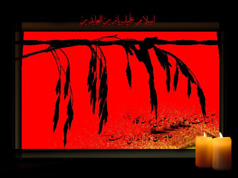 http://www.sibtayn.com/swf/gallery/images/monasebat/shahadat/sajad/pic3/pic17.jpg