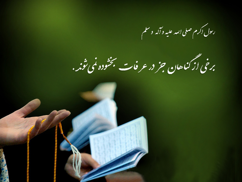 http://www.sibtayn.com/swf/gallery/images/monasebat/zihajeh/arafe/pic3/pic27.jpg