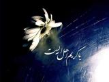إستشهاد الإمام الحسن عليه السلام 05