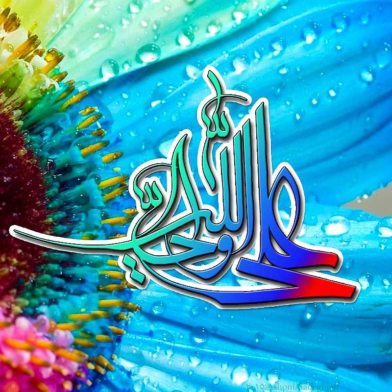 علی ولی الله